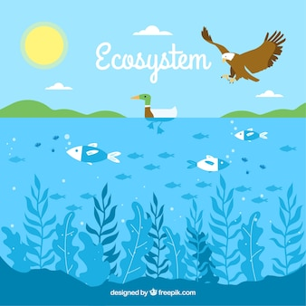 Ecosystem concept with eagle and ocean