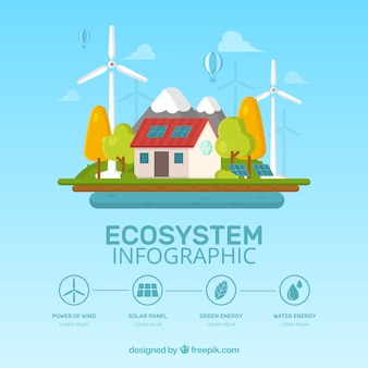 Ecosystem infographics design