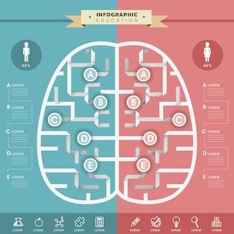 Дизайн шаблона инфографики образования с мозгом оригами