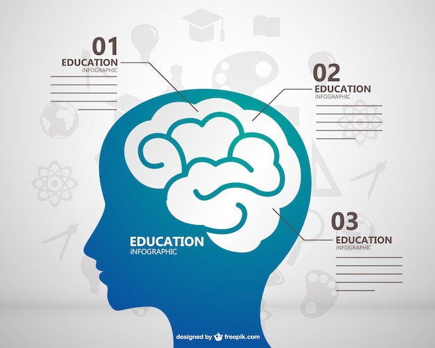 Education infographic with brain