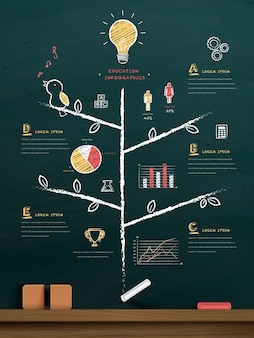 Education tree drawn on chalkboard with lovely icons and chart