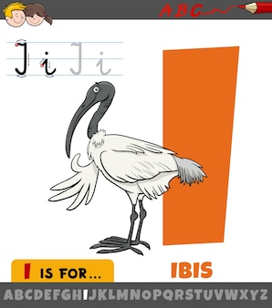 Educational cartoon illustration of letter i from alphabet with ibis bird animal character for children