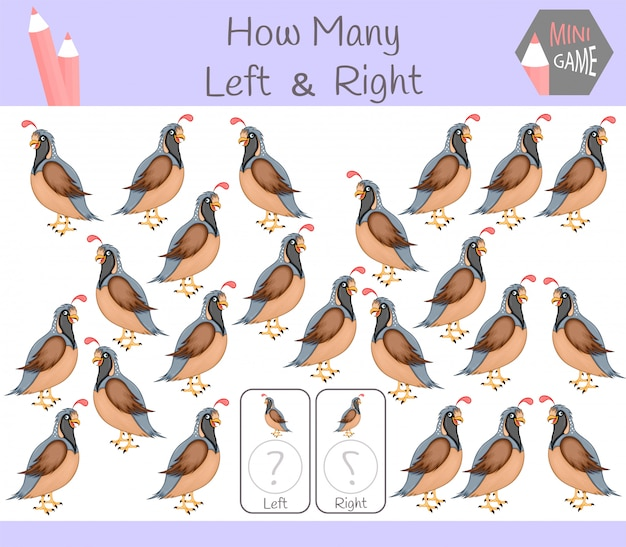 Educational game of counting left right pictures with quail