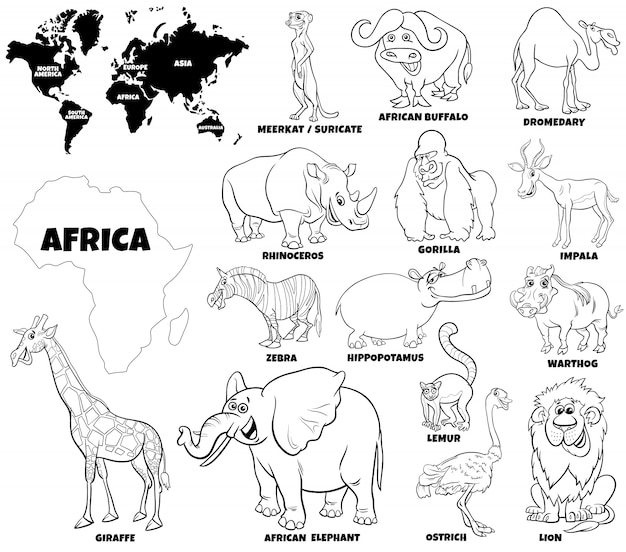Educational illustration of african animals color book page