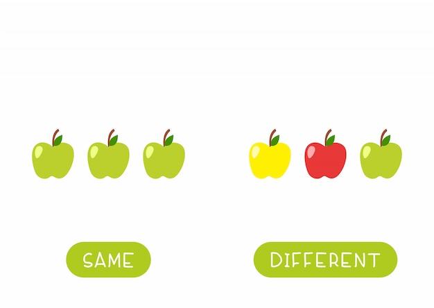 어린이 템플릿 교육 단어 카드. 사과로 공부하는 언어에 대한 플래시 카드. 반의어, 다양성 개념. 타이포그래피와 동일하고 다른 과일 평면 그림