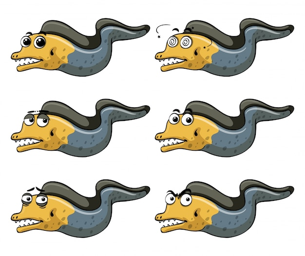 Eel with different emotions