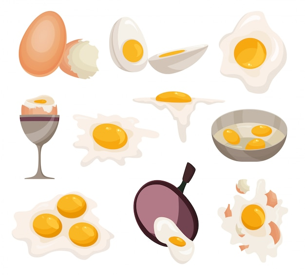 Egg vector healthy food