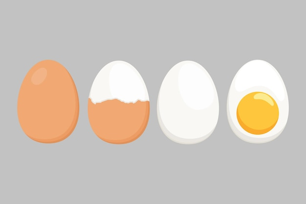 Egg vector isolated on a white background. set of boiled eggs, half peeled, peeled, sliced. vector illustration. eggs in various shapes in flat illustration style