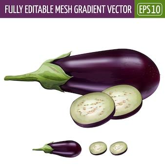 Eggplant illustration on white
