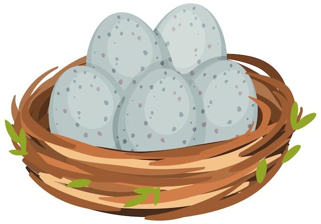 Яйца в птичьем гнезде изолированы