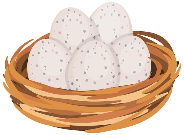 새 둥지에있는 계란