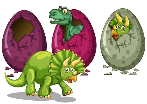 Uova e illustrazione di molti dinosauri