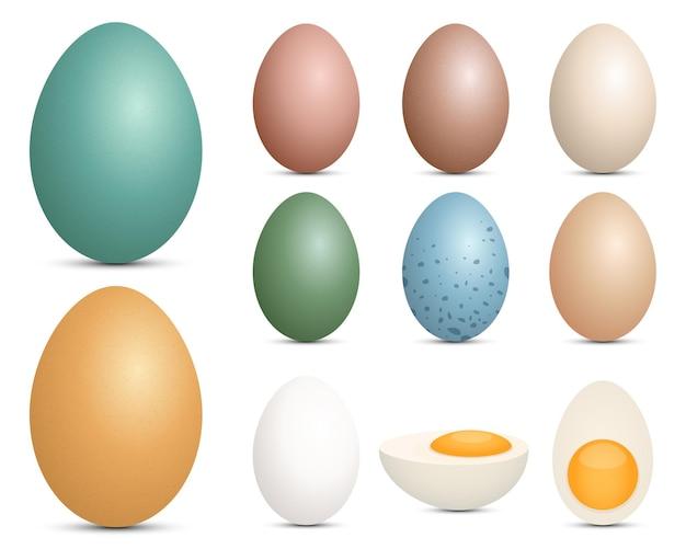 白い背景で隔離の卵セットデザインイラスト