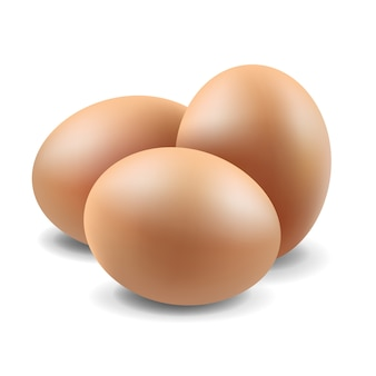 Eggs set isolated