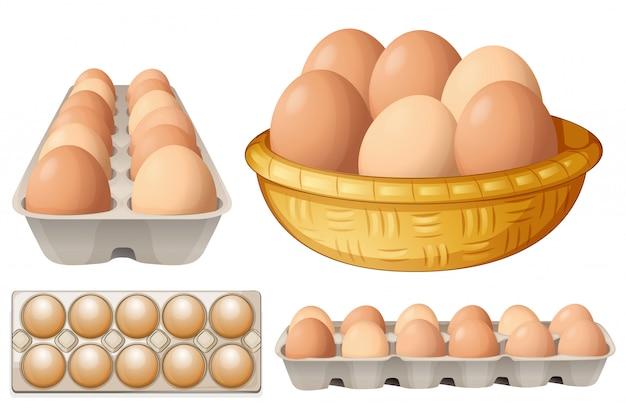 Яйца Бесплатные векторы