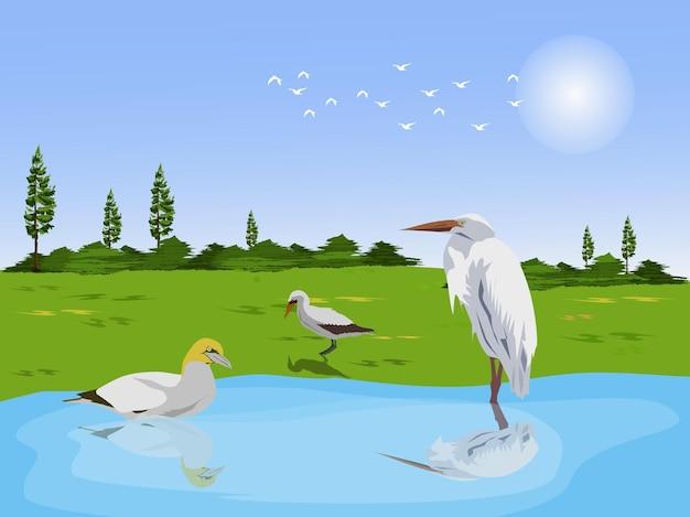 緑の牧草地と空を背景にした小川の白鷺と青緑。