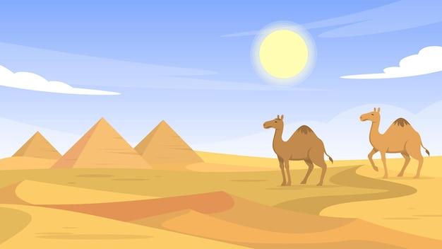 이집트 사막 - 외부 장면
