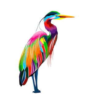 이집트 헤론 여러 가지 빛깔의 페인트로 만든 그레이트 블루 헤론 수채화 색 그림의 스플래시