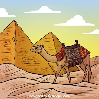 Egyptian pyramids and a camel illustration