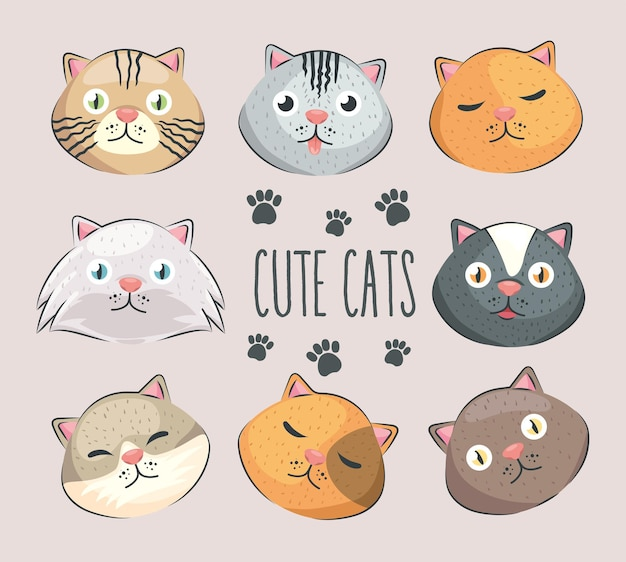 Eight heads cats Premium Vector