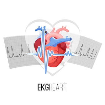 Ekg readings on paper and human heart promo emblem.