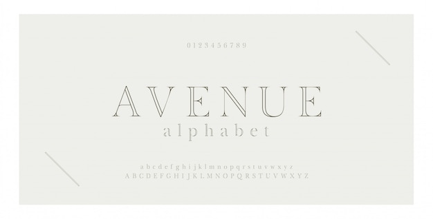 Elegant alphabet letters serif font and number.
