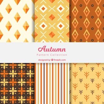 Elegant autumn pattern