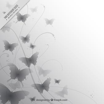 회색 나비의 우아한 배경