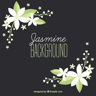 Elegant background with flat jasmine