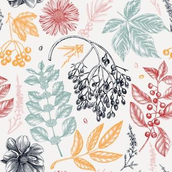 秋の葉、ベリー、花のスケッチとエレガントな植物の背景