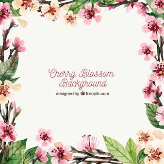 Elegant cherry blossom background