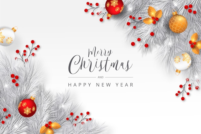 Elegant christmas background with white branches
