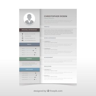 Elegant curriculum template with minimalist style