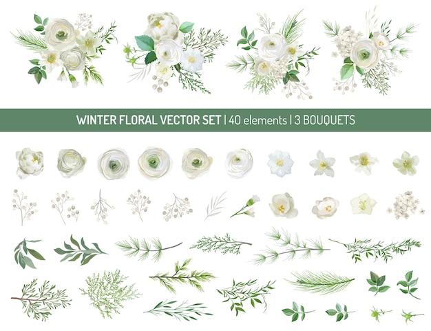 우아한 상록 소나무 가지, 창백한 장미, 흰색 수국, 라눈큘러스 꽃, 유칼립투스, 마가목 베리, 녹지 잎, 꽃 요소. 트렌디한 겨울 부케입니다. 벡터 격리 그림 세트