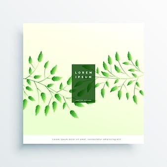 Elegant green leaves elegant background
