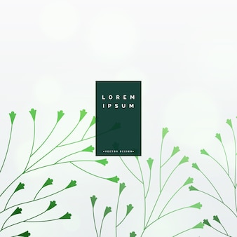 Elegant green leaves vector background