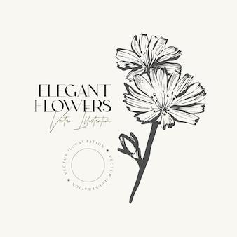 Elegant hand draw sketch herbs or flowers.