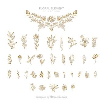 Elegant hand drawn floral element collection