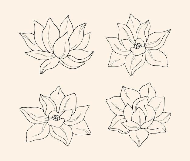 Элегантная коллекция цветов лотоса