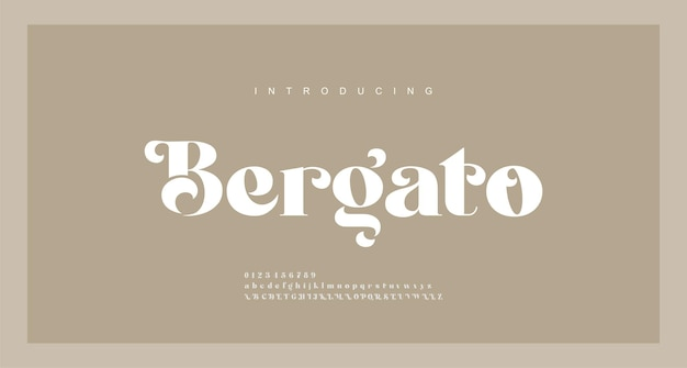 Elegant luxury alphabet letters font. typography modern serif fonts regular decorative vintage concept. illustration
