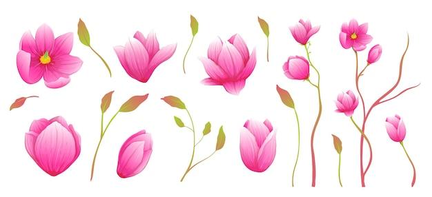 Элегантные роскошные ветви магнолии картинки для создания композиций. коллекция рисованной акварель стиль.