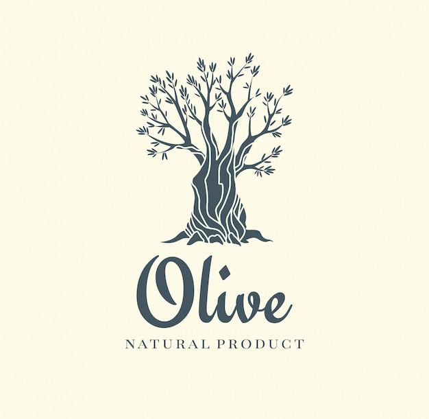 우아한 올리브 나무 격리 된 아이콘입니다. 크리 에이 티브 올리브 나무 실루엣입니다. 광고 제품 프리미엄 품질에 사용되는 로고 디자인