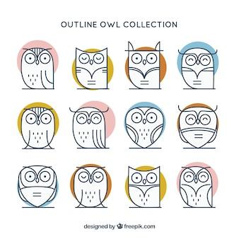 Elegant outline owl pack