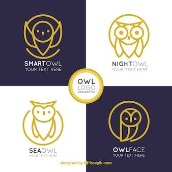 Elegant owl logo collection