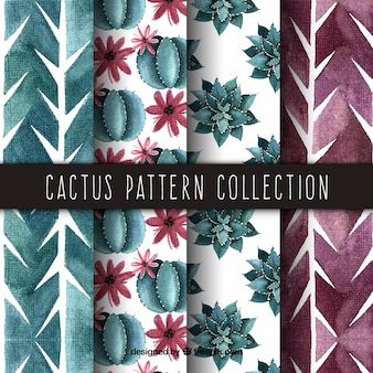 Elegant pack of watercolor cactus patterns