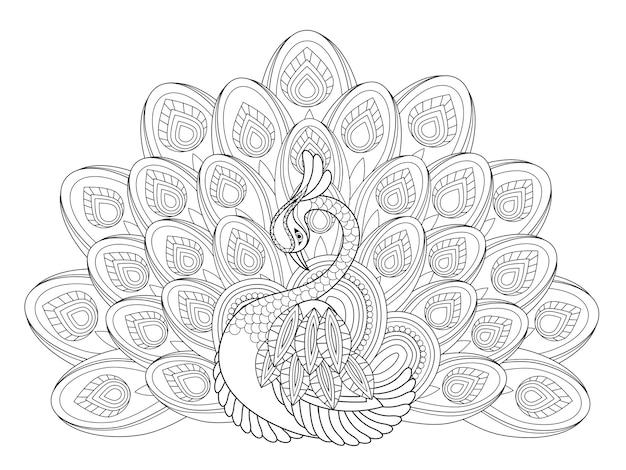 Elegant peacock coloring page in exquisite style Premium Vector