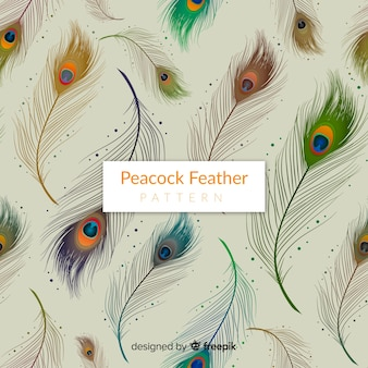 Elegant peacock feather pattern with realistic design