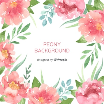 Elegant peony flowers background in watercolor style