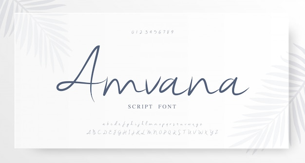 Elegant script classic alphabet letter font number