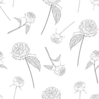白地に咲くバラでエレガントなシームレスパターン